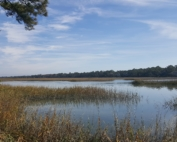 Site Considerations on Kiawah Island